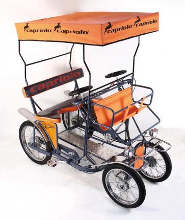 Capriolo Produzione Biciclette Mountainbike City Bike Road